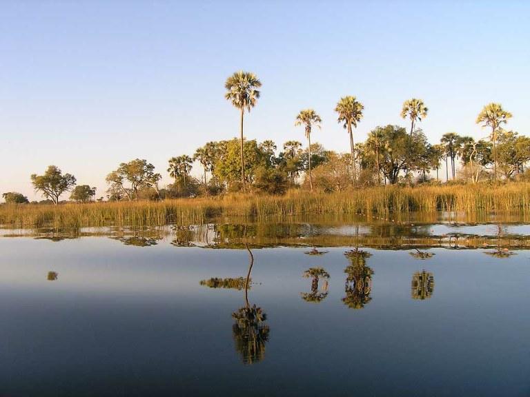 Okavango Delta placed on World Heritage List