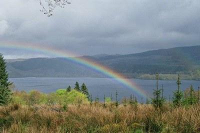 Return to Scottish lochs