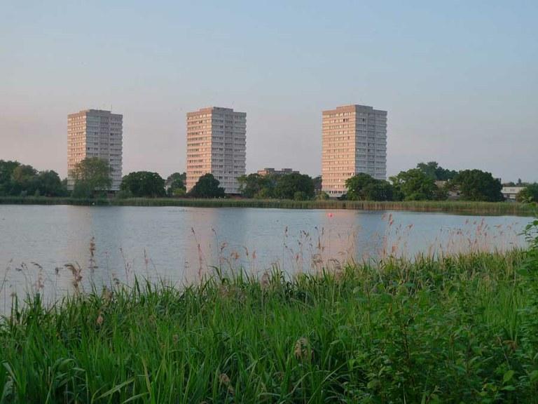 Rethinking Urban Nature