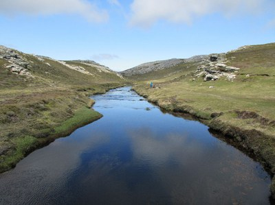 Wetland Research in the Falkland Islands