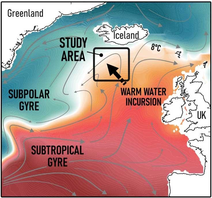 Decline in NE Atlantic cold-water plankton during industrial era