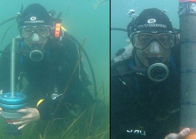 Seagrass loss around the UK higher than previously thought