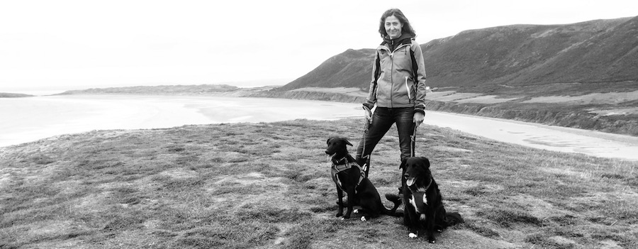HB, Muck and Dory at Rhossili
