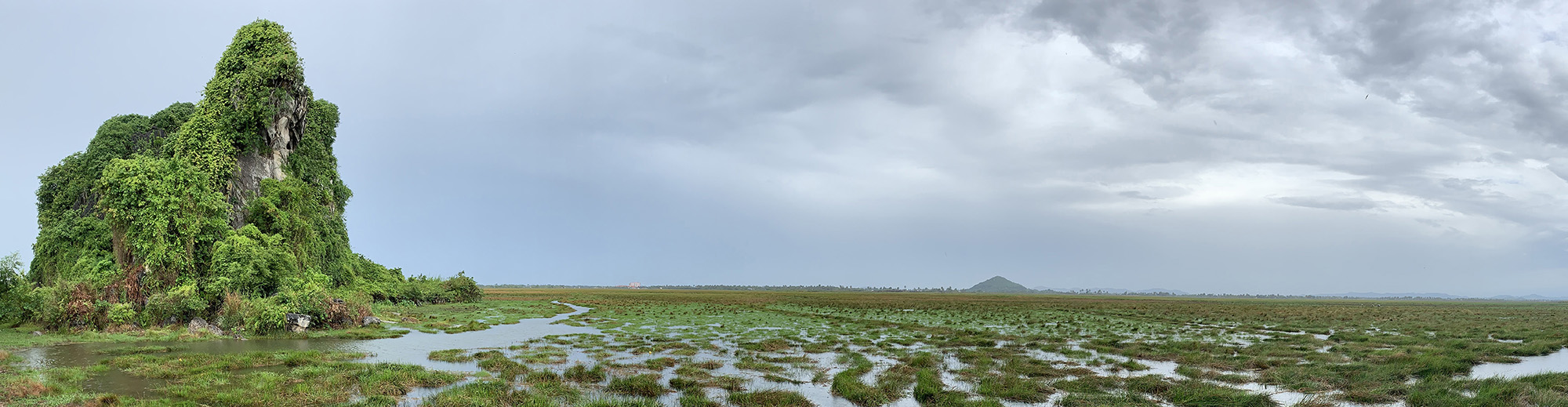 Cambodian Wetland