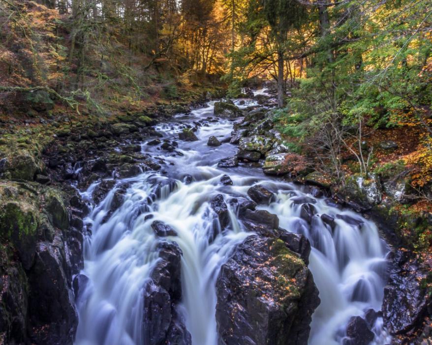 Cairngorms Stream