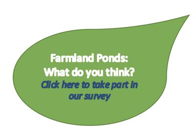 Online Ponds Survey