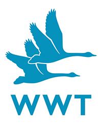 wwt_logo_RGB.jpg